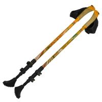 Телескопические палки для скандинавской ходьбы Ergoforce Е 0679