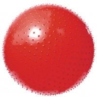 Мяч массажный 602/55 см VEGA с насосом